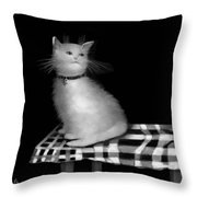 Cat On Checkered Tablecloth   No. 3 Throw Pillow