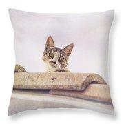 Cat On The Hot Tin Roof Throw Pillow