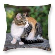 Cat On Tree Trunk Throw Pillow