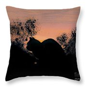 Cat - Orange - Silhouette Throw Pillow