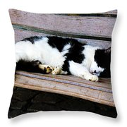 Cat Sleeping On Bench Throw Pillow
