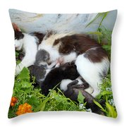 Cat Suckling Throw Pillow