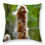 Cat Tail Fuzz Throw Pillow