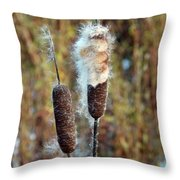 Cat Tail Seeds Throw Pillow