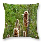 Cat Tails Throw Pillow
