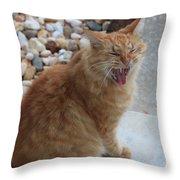 Cat Talk Throw Pillow by Ella Char