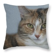 Cat With Swirls Throw Pillow