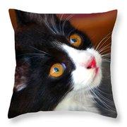 Innocent Kitten Throw Pillow