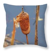 Catails Throw Pillow
