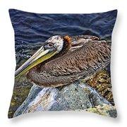 Catalina Pelican Throw Pillow
