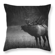 Cataloochee Bull Elk Throw Pillow