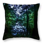 Cataracts Canyon Calm Water Throw Pillow