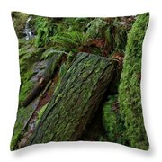 Cataracts Canyon Mossy Log  Throw Pillow