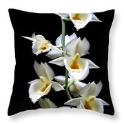 Catasetum Pileatum Orchid  Throw Pillow