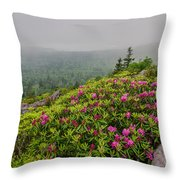 Catawbas And Fog Throw Pillow