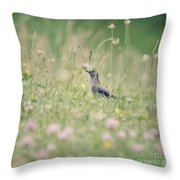 Catbird In The Wildflowers Throw Pillow