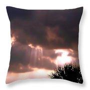 Catch A Sunbeam Throw Pillow