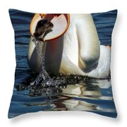 Catching A Rainbow Throw Pillow by Kathleen Bishop