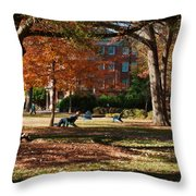 Catching Rays - Davidson College Throw Pillow