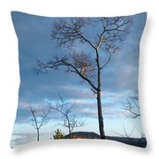 Catching Some Rays Throw Pillow
