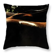 Catching Some Shade 17197 Throw Pillow