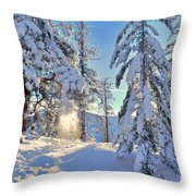 Catching The Light Throw Pillow by Tara Turner