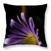 Catching The Sun's Rays Throw Pillow