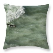 Catching The Wave Throw Pillow