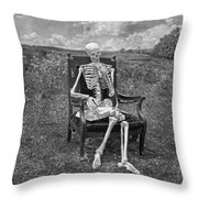Catching Up On Human Anatomy And Physiology II Throw Pillow