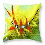 Caterpillar 2 Throw Pillow