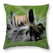 Caterpillar 22 Throw Pillow