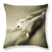 Caterpillar In Waiting Throw Pillow