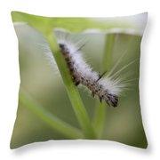 Caterpillar's Spring Green Throw Pillow