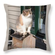 Catfeeder Throw Pillow