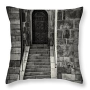 Cathedral Door And Steps Throw Pillow