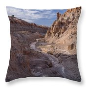 Cathedral Gorge Wash Throw Pillow