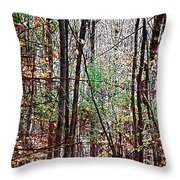 Cathedral In The Woods Throw Pillow