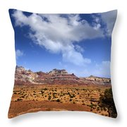 Cathedral Wash Throw Pillow