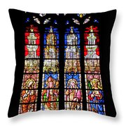 Cathedrale D'aix En Provence.france Throw Pillow