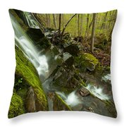 Cathles Jewels Throw Pillow