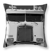 Catr3137-13 Throw Pillow