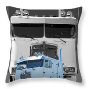 Catr3137b-13 Throw Pillow