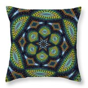 Cats Eye Marble Throw Pillow by Alec Drake