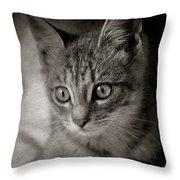 Cat's Eyes #05 Throw Pillow