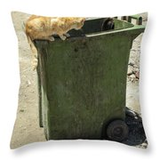 Cats On And In Garbage Container Throw Pillow
