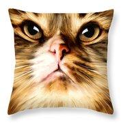 Cat's Perception Throw Pillow