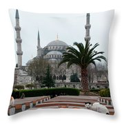 Cats Sitting On Outdoor Seats Throw Pillow