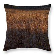 Cattail Bog   #3868 Throw Pillow