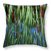 Cattail Pond Throw Pillow