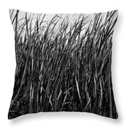 Cattail Reed Background Throw Pillow